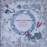 אמילי בארץ הפלאות : מוקדש לכם, שאוהבים לדמיין, שאוהבים לצייר / מאת אמילי שן – הספרייה הלאומית
